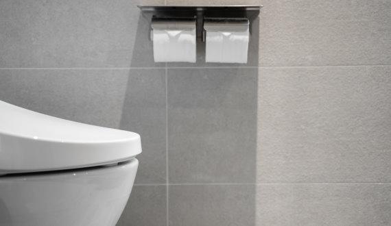 toilet-4-570x330
